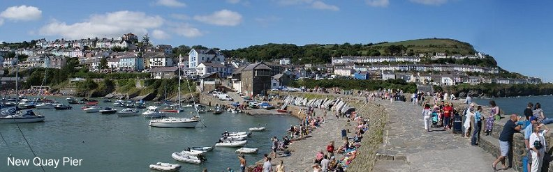 Dog Friendly Accommodation New Quay Wales